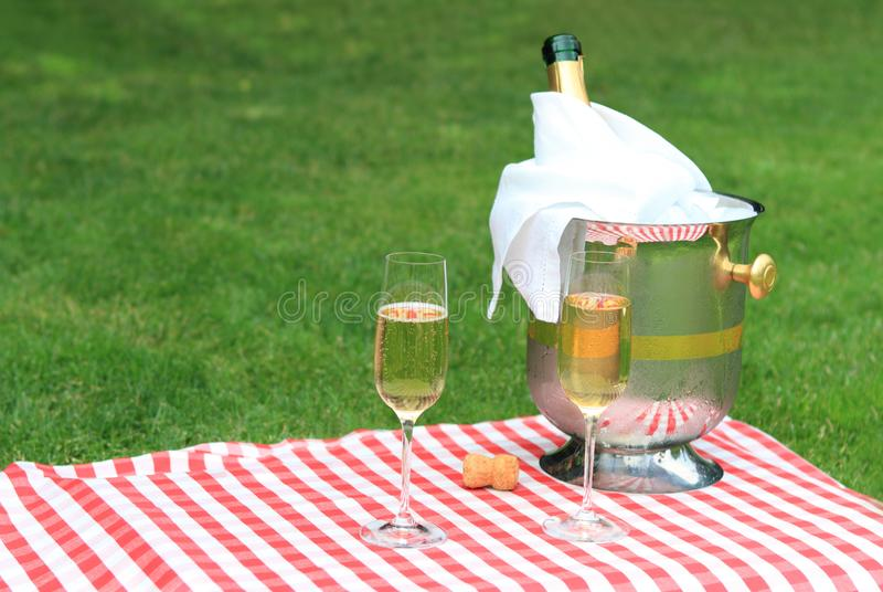 Download Champagne for two stock image. Image of celebrate, party - 14955565