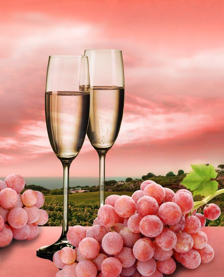 Champagne, uvas cor-de-rosa e vinhedo imagens de stock