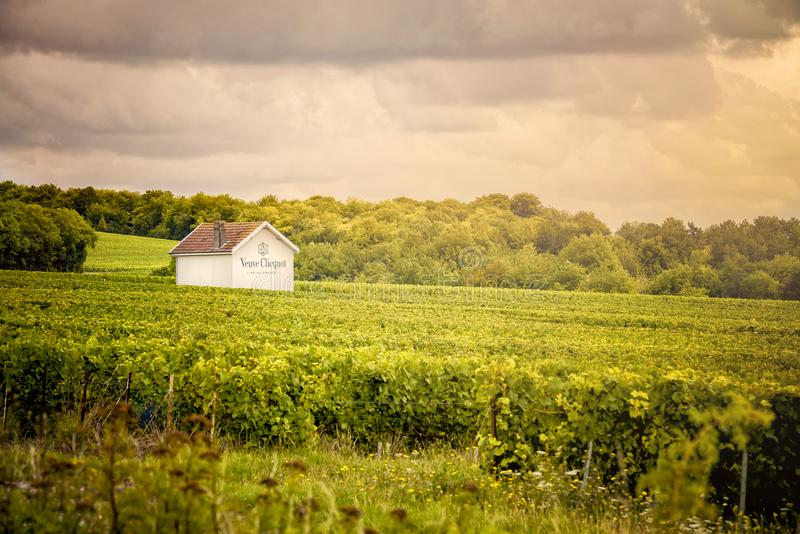 Champagne Vineyards Champagne Ardennegebied frankrijk royalty-vrije stock afbeeldingen