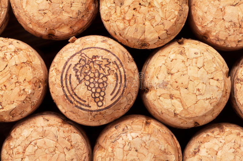 Champagne wine corks texture. Background stock photos