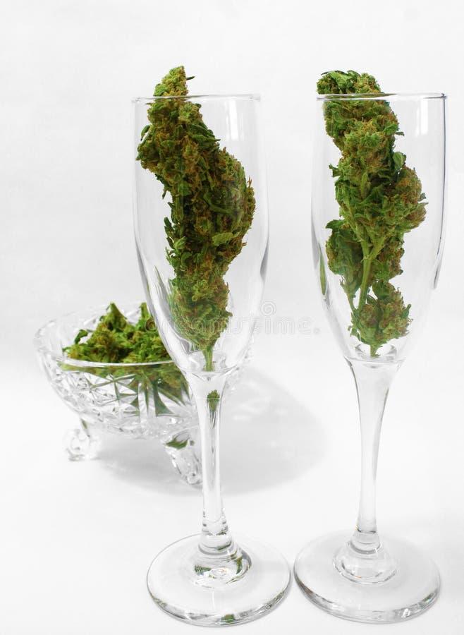 Champagneflöjter som fylls med Marijuanaknoppar royaltyfri fotografi