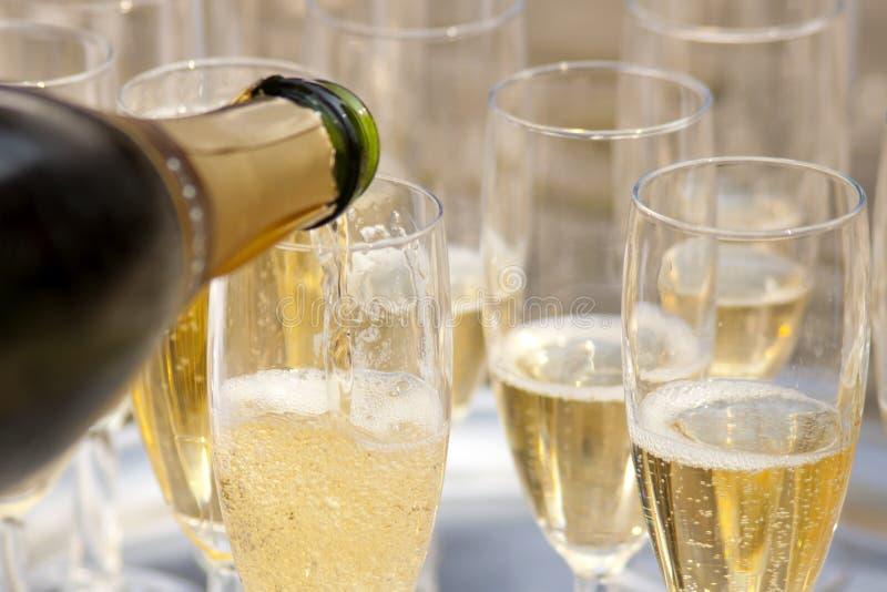 champaign fotografering för bildbyråer