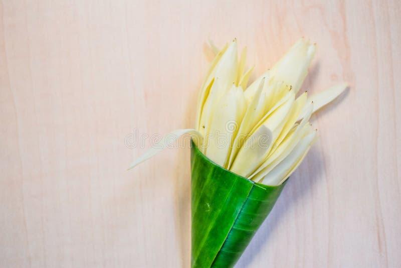 Champaka blanco envuelto en hojas del plátano imagen de archivo