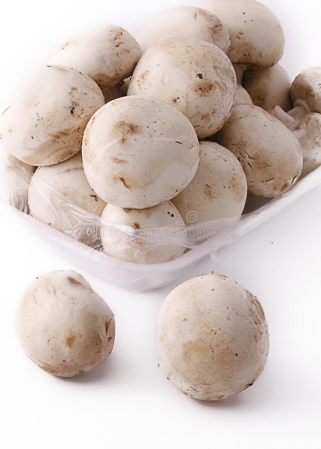 Download Champignon Royalty Free Stock Photography - Image: 21094767