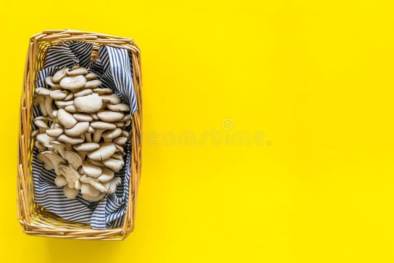 Champignon d'huître Veshenka cru frais dans le panier sur l'espace jaune de copie de vue supérieure de fond images libres de droits