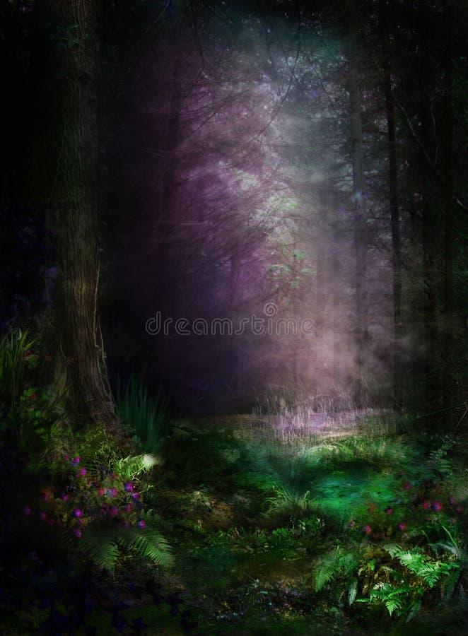 Champignon de couche dans la forêt magique illustration de vecteur