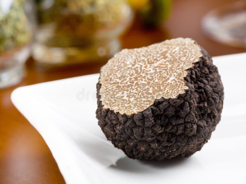 Champignon de couche de truffe photo stock