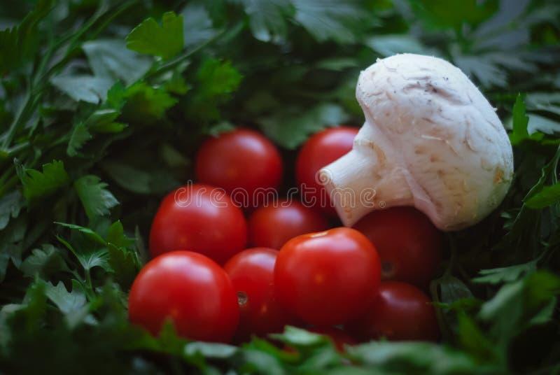 champignon de paris, cerise, et persil image stock