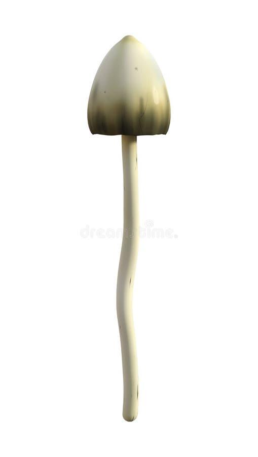 champignon magique de l'illustration 3D sur le blanc illustration de vecteur
