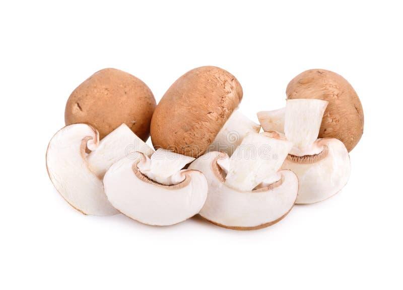 Champignon suisse frais entier et coupé en tranches de brun ou de champignon de paris sur le fond blanc photographie stock libre de droits