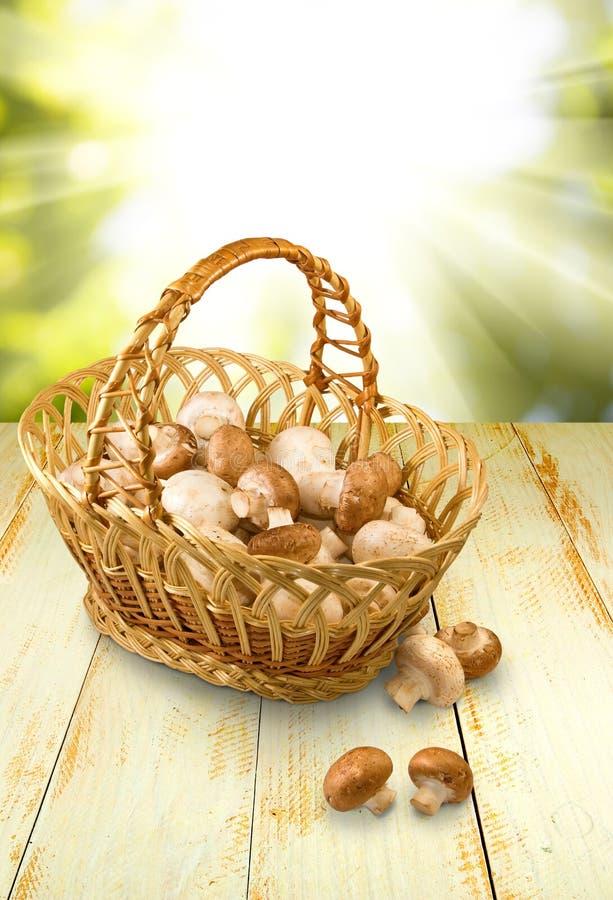 Champignons in basket closeup. Image of mushrooms in basket closeup royalty free stock photography