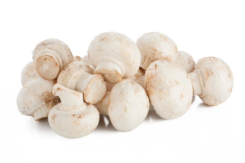 Champignons de couche blancs photographie stock libre de droits