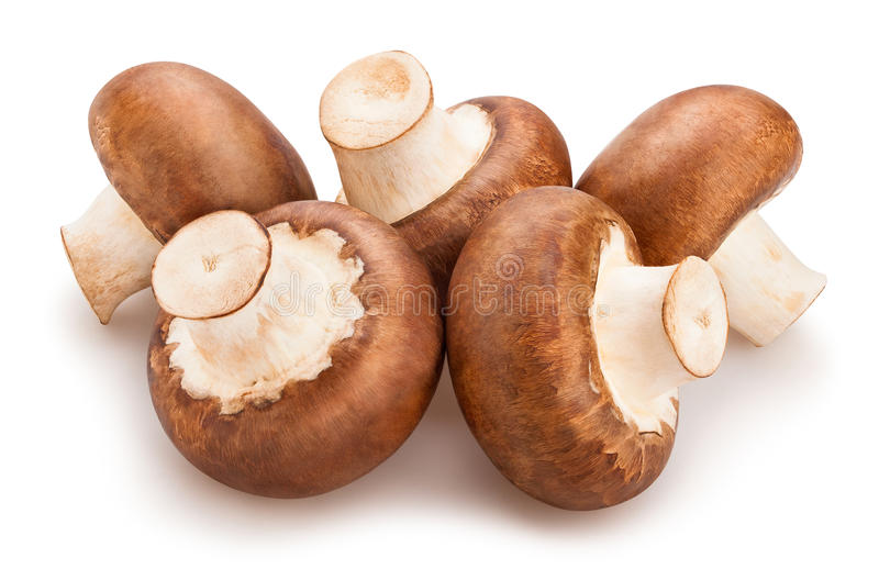 champignons de couche bruns photographie stock libre de droits