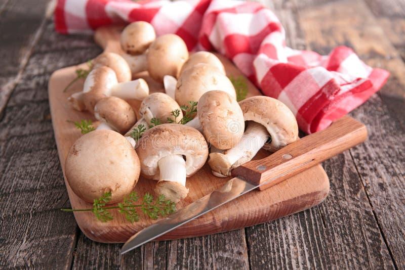 Download Champignons De Couche Frais Photo stock - Image du cuisine, cuisinier: 45350472