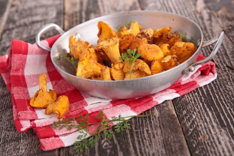 Download Champignons De Couche Frais Image stock - Image du comestible, sain: 45350923