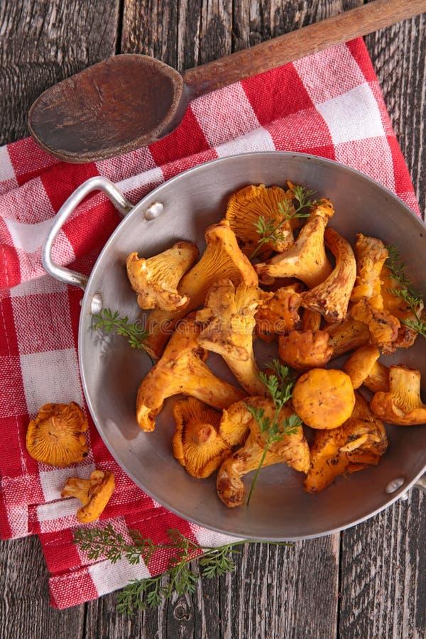 Download Champignons De Couche Frais Photo stock - Image du cuisinier, sain: 45351068