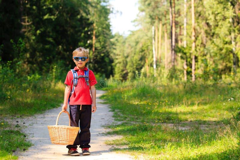 Champignons de cueillette de petit garçon dans la forêt d'été image stock