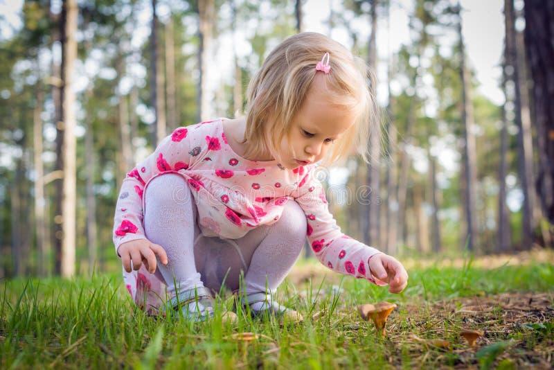champignons de cueillette de fille d'enfant en bas âge dans une forêt photographie stock