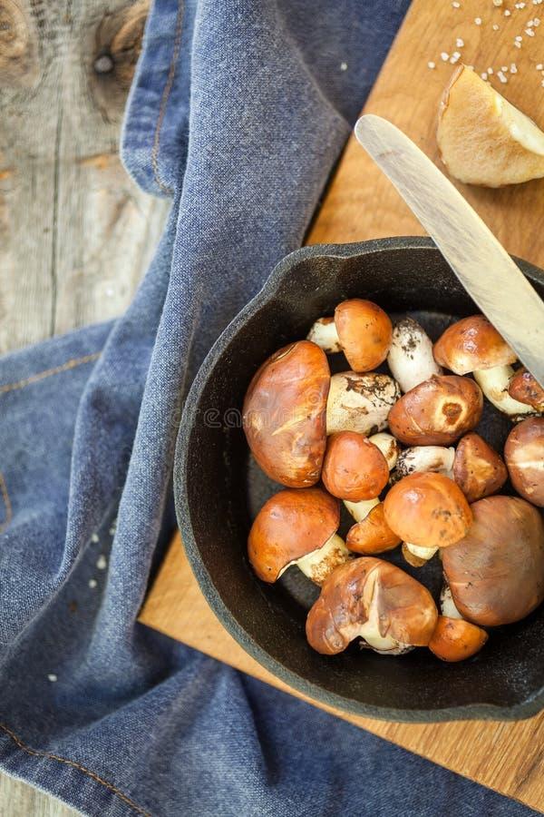 Champignons de cueillette de forêt Luteus comestible de Suillus de champignon photos stock