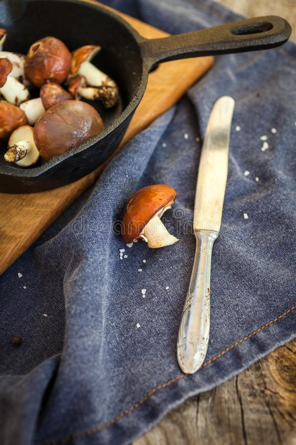 Champignons de cueillette de forêt Luteus comestible de Suillus de champignon photographie stock
