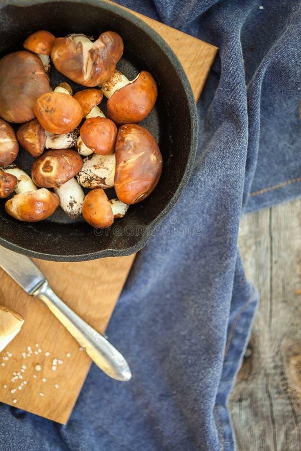 Champignons de cueillette de forêt Luteus comestible de Suillus de champignon photo stock