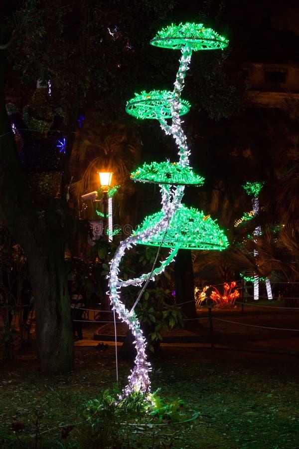 Champignons de lumières de Noël image libre de droits