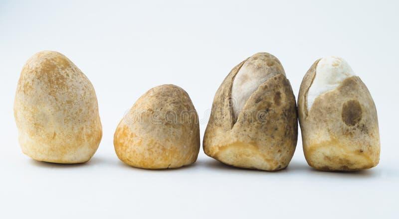 champignons de paille photos libres de droits