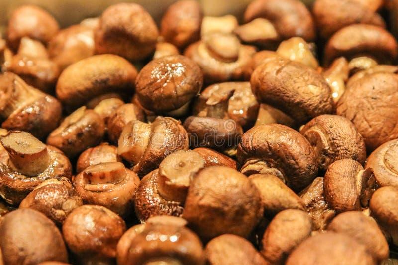 Champignons de Sauted Brown photographie stock