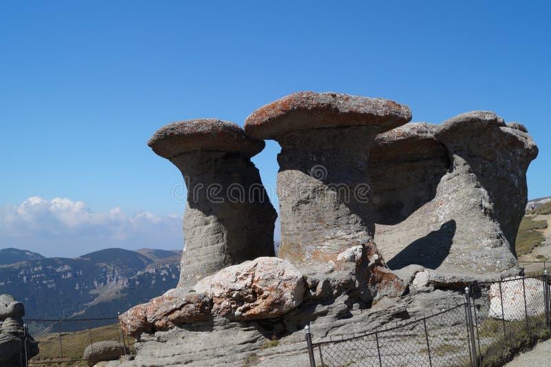 Champignons en pierre appelés et x22 ; Vieux Women& x22 ; et x28 ; Babele& x29 ; photo libre de droits