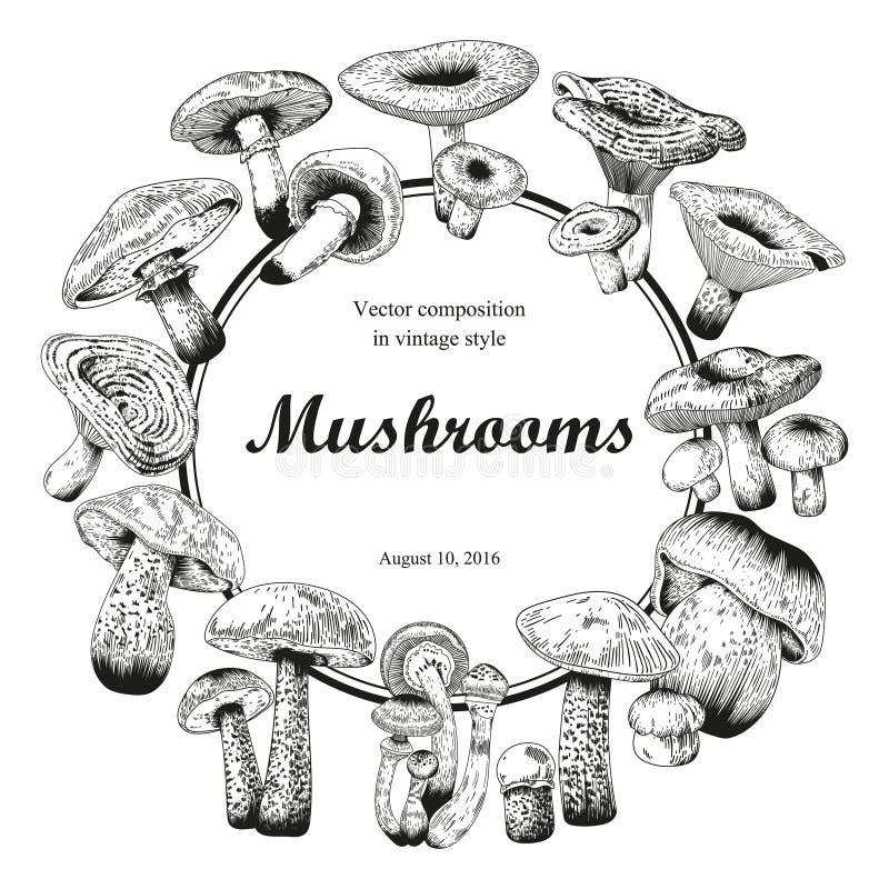 Champinjoner bostonian gravyr Vektortappningillustration rund ram vektor illustrationer