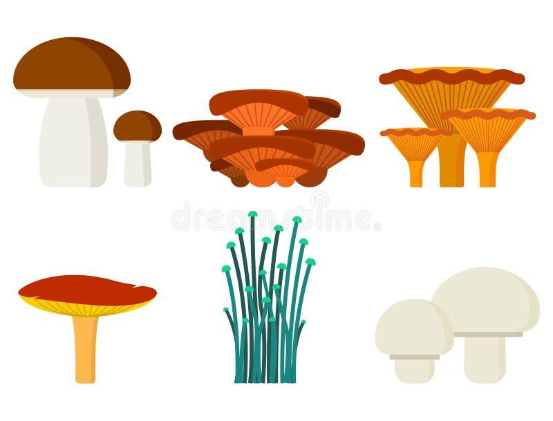 Champinjoner för den ätliga vegetariska sunda hösten för kockmat och för giftigt naturmål och den rå svamp organiska grönsaken vektor illustrationer