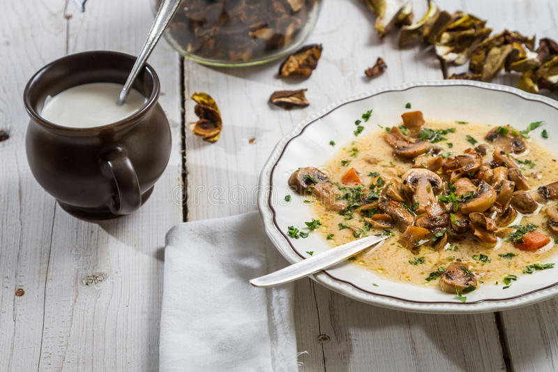 Champinjonsoppa med kräm- och torkade champinjoner arkivfoto