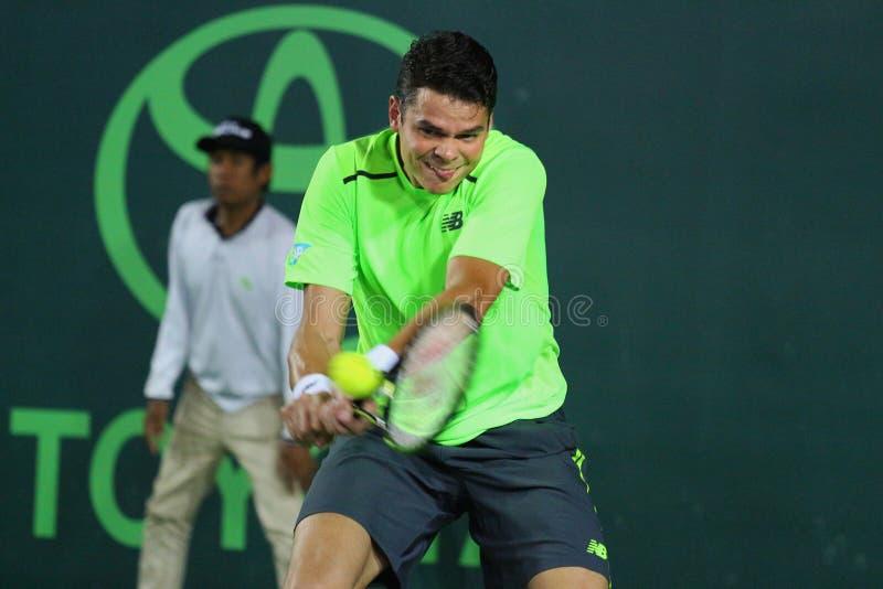 Championnat 2015 de tennis du monde photo libre de droits