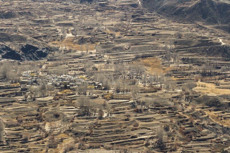 Champs asiatiques de village et de terrasse de montagne en automne dans le mustang inférieur, Népal, Himalaya, région de conserva photos libres de droits