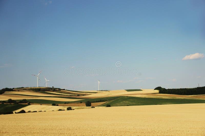 Champs avec des générateurs de vent photographie stock