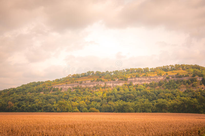 Champs de maïs au-dessous des bluffs du Mississippi images libres de droits