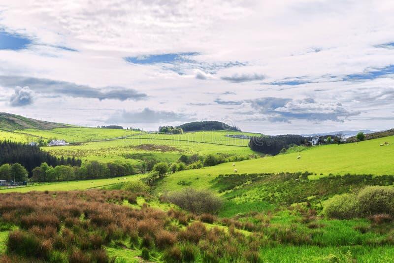 Champs de terres cultivables dans Kintyre dans les montagnes de l'Ecosse image stock