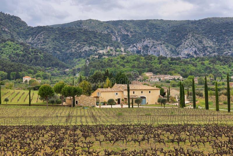 Champs de vignoble avec village ascendant d'Opede Les Vieux le petit au fond, France photographie stock libre de droits