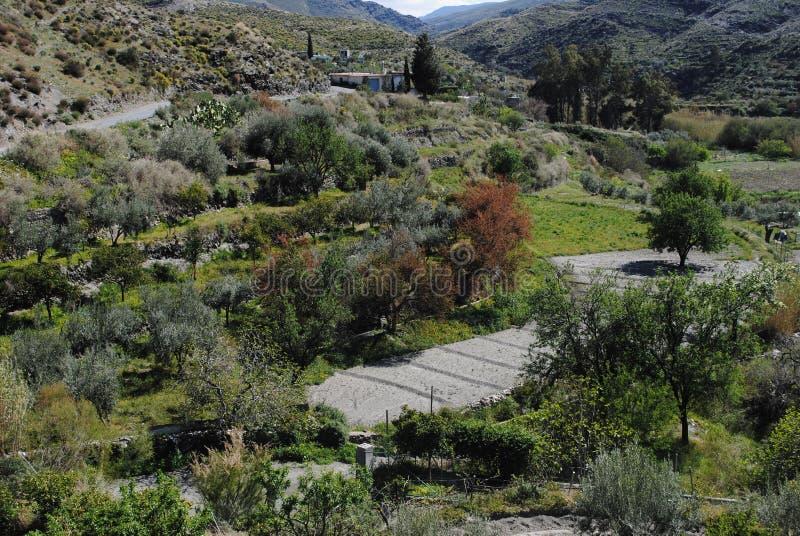 Champs du sud de l'Espagne images stock