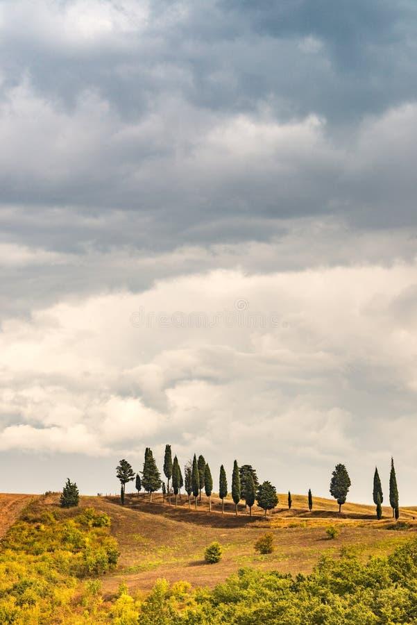 Champs en Toscane photographie stock