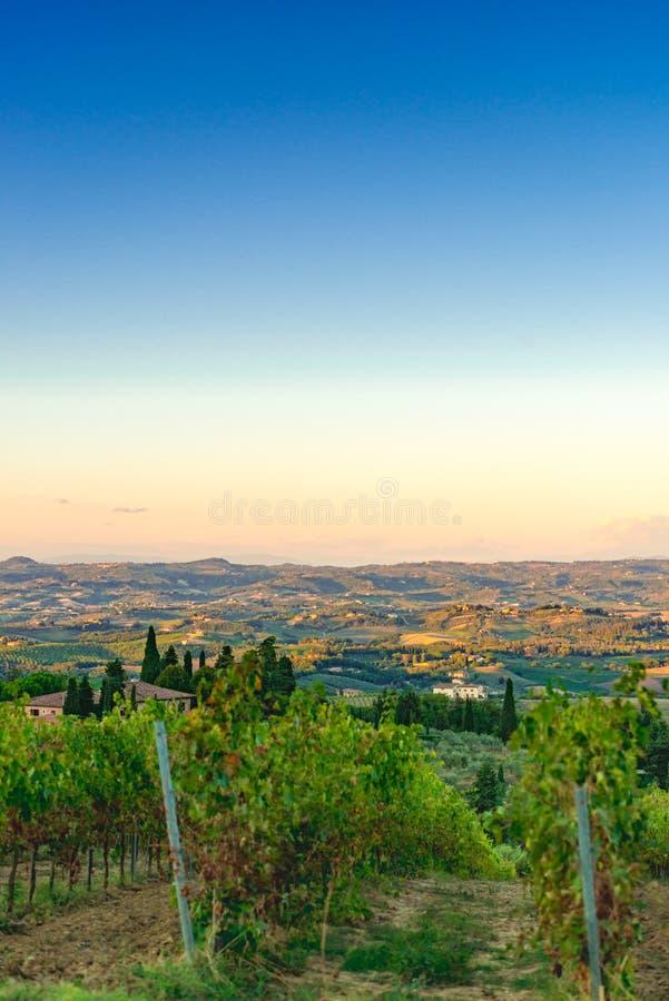 Champs en Toscane photos libres de droits