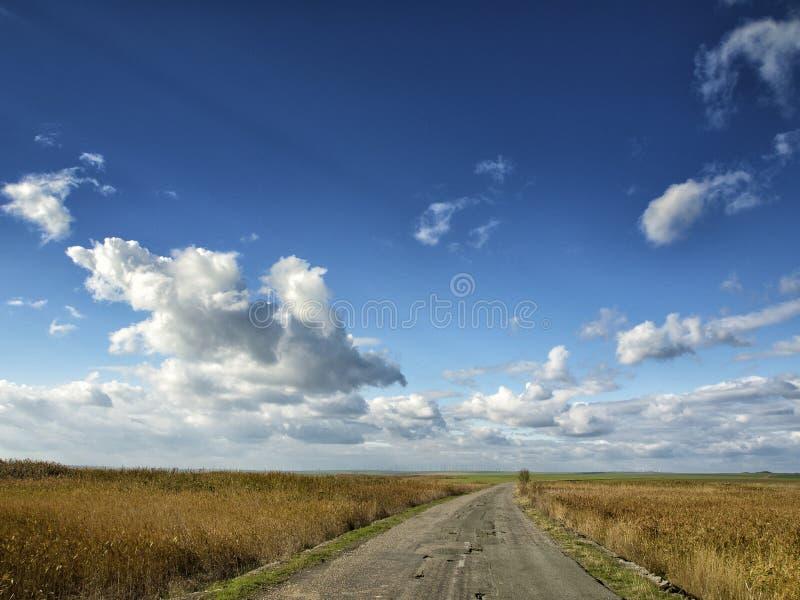 Champs jaunes sous un ciel bleu dramatique avec les nuages blancs voisins la colonie du grec ancien de Histria, sur les rivages d photos libres de droits