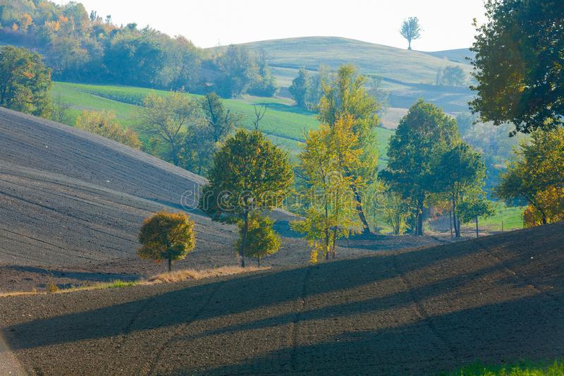 Champs labourés dans les collines image stock