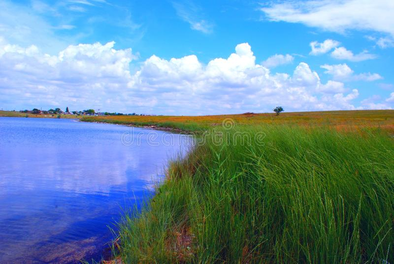 Champs par le lac bleu images libres de droits