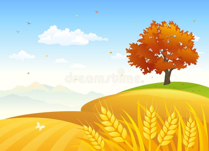 Champs ruraux d'automne illustration stock