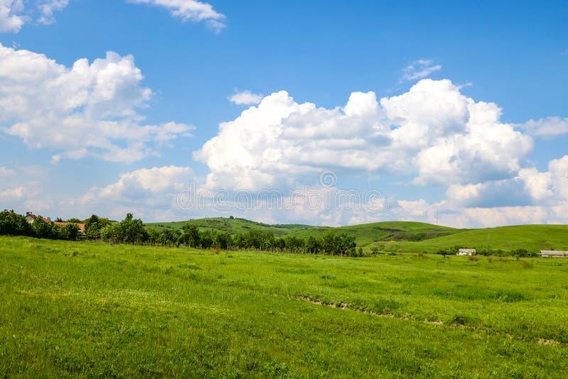 Champs verts sur le fond des montagnes et du ciel bleu avec les nuages blancs image stock