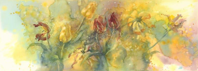Chamusque el fondo amarillo y rojo de la acuarela de los tulipanes, flores de muerte fotos de archivo