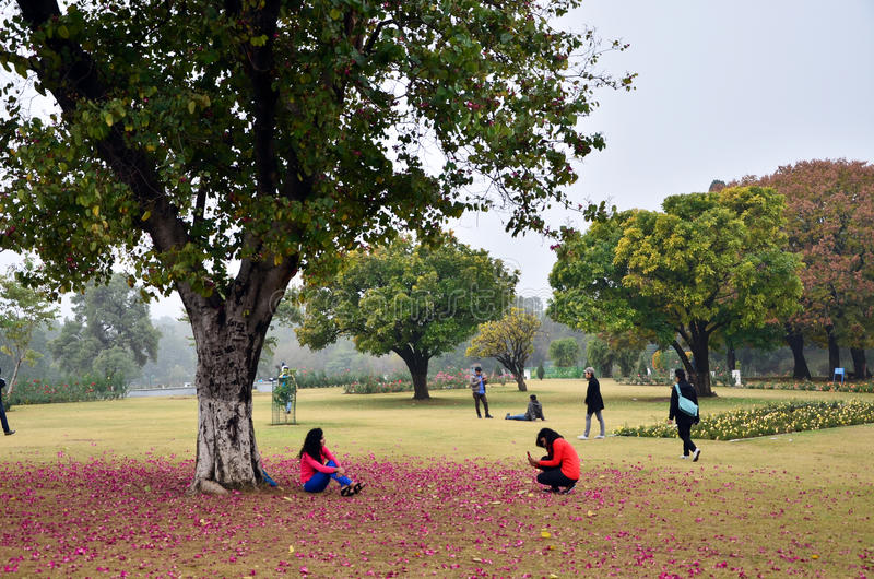 Chandigarh, India - 4 gennaio 2015: Visita turistica Zakir Hussain Rose Garden immagine stock libera da diritti