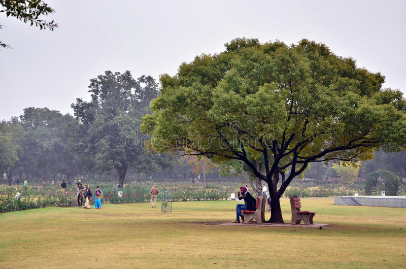 Chandigarh, India - January 4, 2015: Tourist visit Zakir Hussain Rose Garden in Chandigarh. Chandigarh, India - January 4, 2015: Tourist visit Zakir Hussain royalty free stock photos