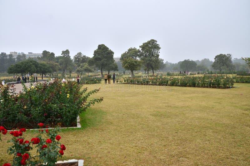 Chandigarh, la India - 4 de enero de 2015: Visita turística Zakir Hussain Rose Garden en Chandigarh foto de archivo